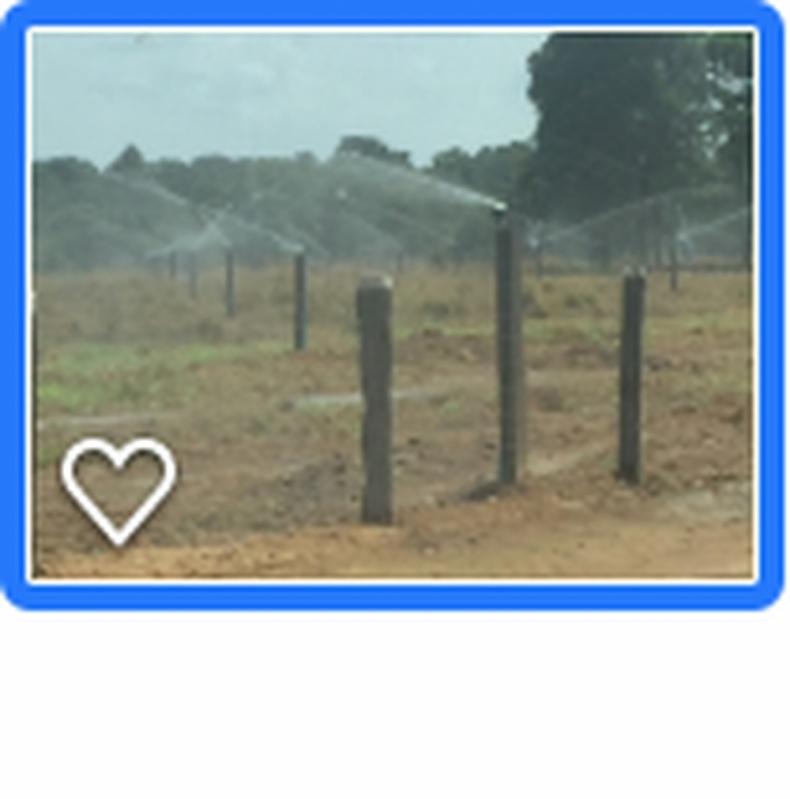 Projeto de Irrigação de Pastagem Sorocaba - Projeto de Irrigação de Pastagem