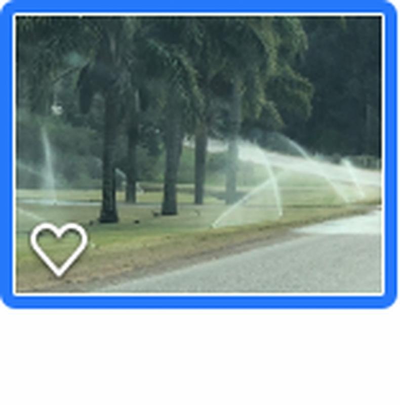 Projeto de Irrigação Preço Pinhalzinho - Projeto Irrigação Pastagem
