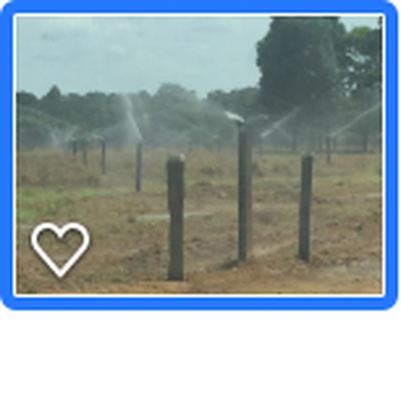 Projetos de Irrigação de Pastagem Itapetininga - Projeto Irrigação Pastagem