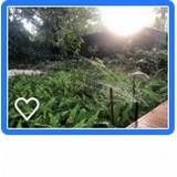 sistema de irrigação automática
