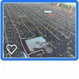 irrigação automatizada para horta preço m2 Rancho Grande