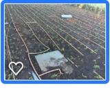 projeto de irrigação de jardim