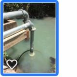 projeto irrigação pastagem