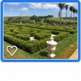 irrigação por microaspersão Tatuí