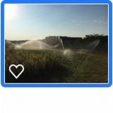 orçamento de aspersor para irrigação Alambari