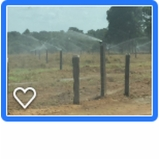 projeto de irrigação de pastagem São João Novo