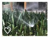 projetos de irrigação agrícola Zona Sul