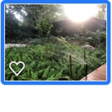 projetos de irrigação Zona Sul