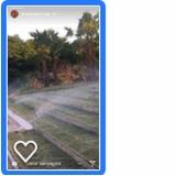 sistemas de irrigação de jardim Vila Paulina