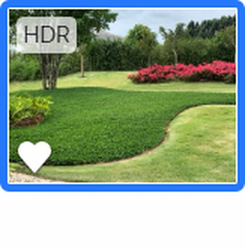 Valor de Projeto de Irrigação Jardim Ibiúna - Projeto de Irrigação Automatizada